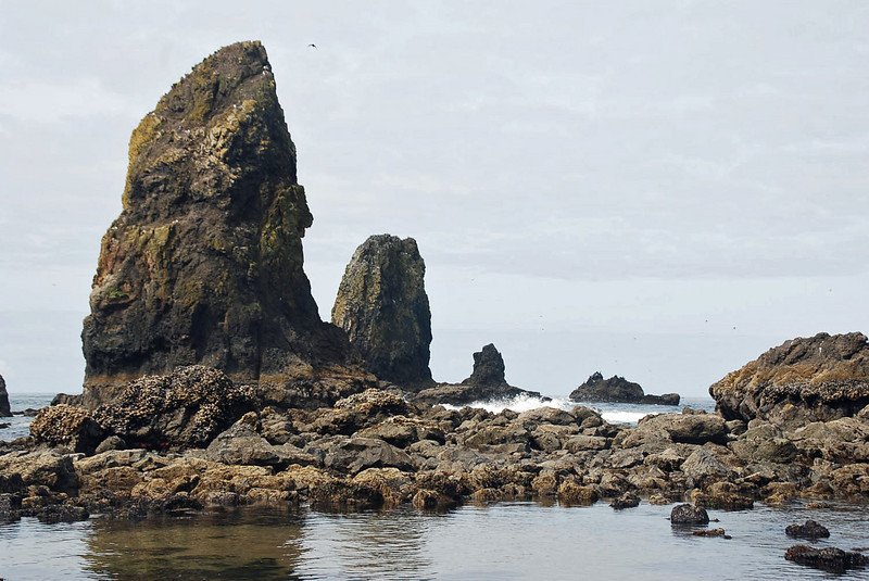 The Needles and other rocks near Haystack Rock in Cannon Beach, Oregon.