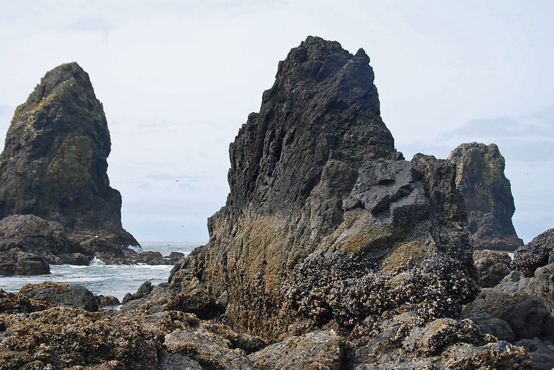 The seacoast near Haystack Rock, Cannon Beach, Oregon.