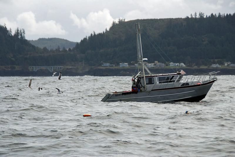 Birds constantly circle around the crabbing boat.