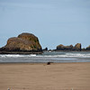 The rocks off the coast at Cannon Beach.