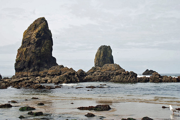 The Needles near Haystack Rock, Cannon Beach, Oregon.