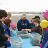 A volunteer explains the nature of the tide pools to a group of school children.