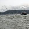 Birds chasing the crabbing boat.