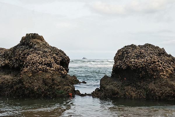 The Tillamook Lighthouse is visible beyond the rocks at Cannon Beach.