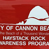 Volunteers are at Haystack Rock to explain what wildlife is visible.