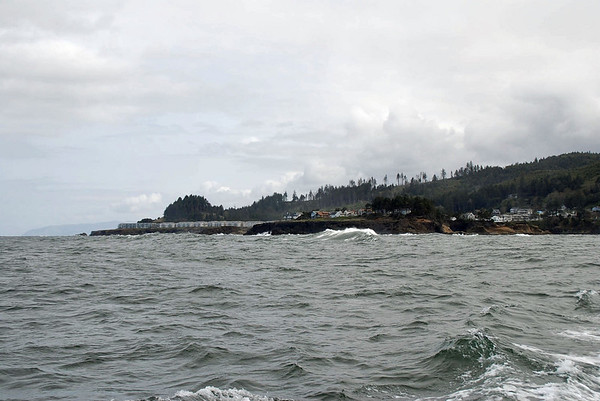 The Oregon coastline.