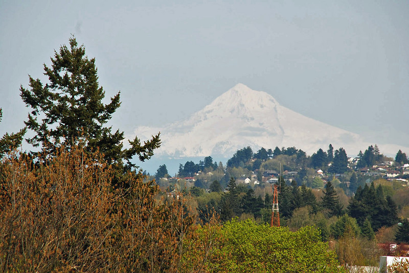 A view of Mt. Hood from our hotel room in Portland, Oregon.