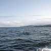 Looking north along the Oregon coast.