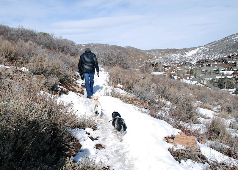 Walking Crosby and friend.