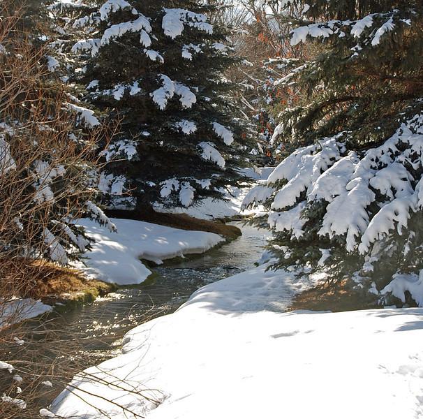 McLeod Creek behind Arnie & Manette's condo in Park City, UT..