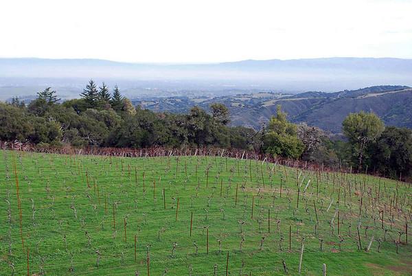 The Thomas Fogarty Winery.