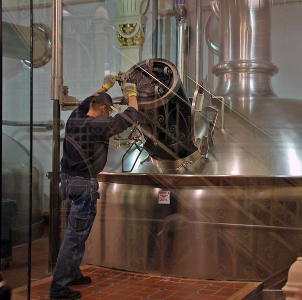 Adding the hops to the brew kettles to make Budweiser beer.