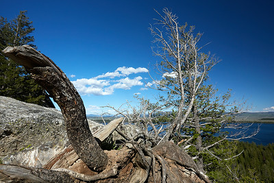 National Parks_0199