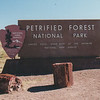 Petrified Forest NP 6-23-95