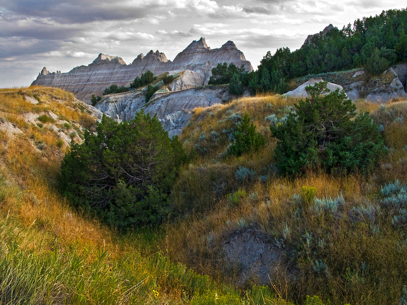 Badlands Grass Canyons to Peaks TM