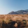 19 Redwood NP