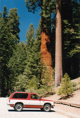 California - Sequoia-Kings Canyon National Park