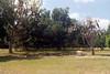 20070519 - 004