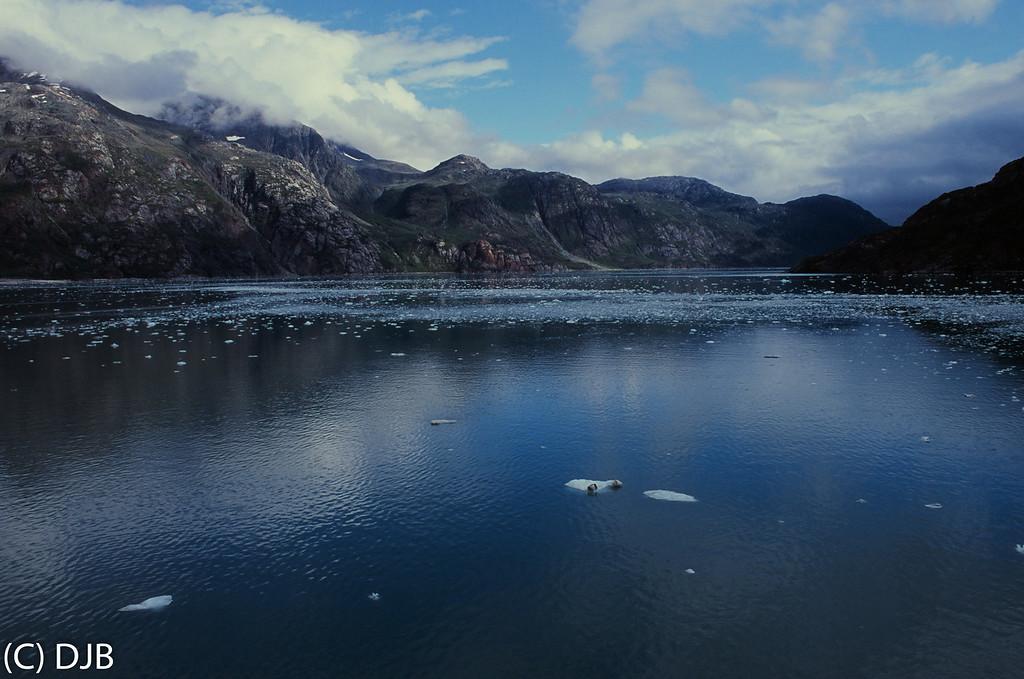 Glacier Bay National Park, Gustavus, Alaska on September 1, 2017.