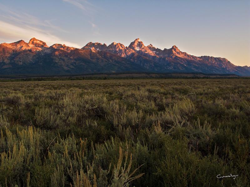 Teton Sage Sunrise