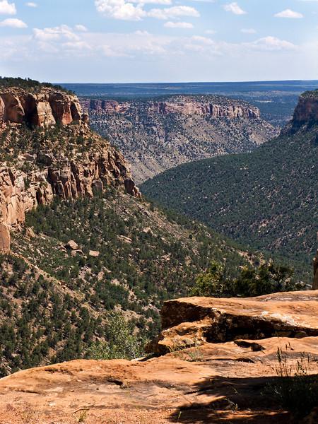 View Down a Canyon 2