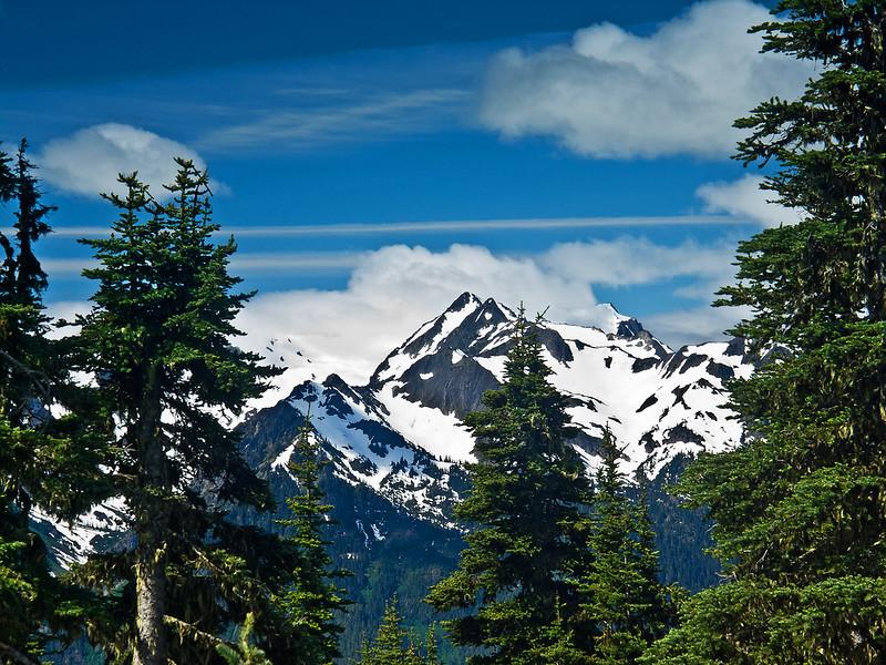 View 9 from Hurricane Ridge