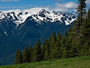 View 1 from Hurricane Ridge