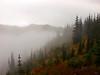 In the Clouds -- Hurricane Ridge