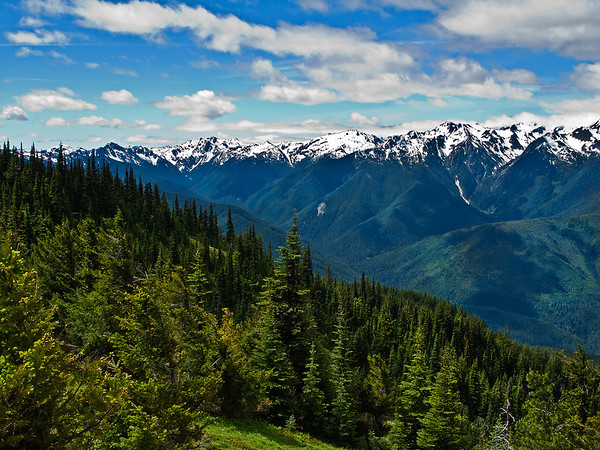 View 3 from Hurricane Ridge