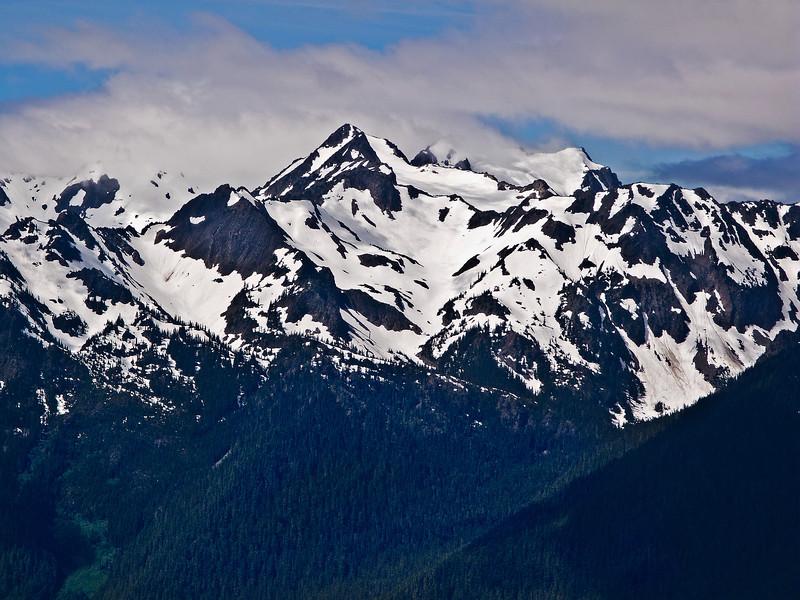 View 5 from Hurricane Ridge