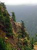 A Cliff -- Along Hurricane Ridge Road