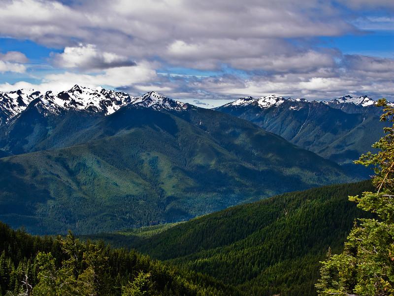 View 4 from Hurricane Ridge