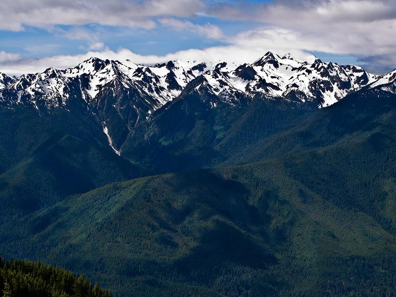 View 2 from Hurricane Ridge