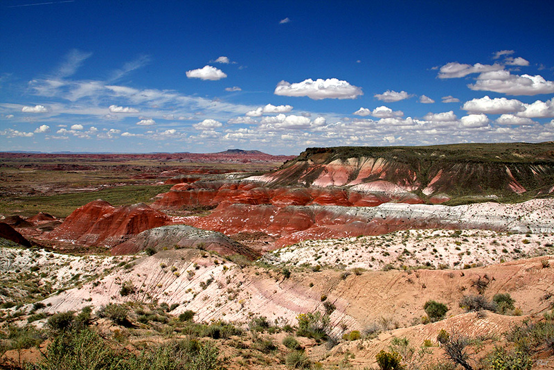 Seen from the northern end of Petrified Forest National Park.