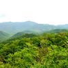 Great Smoky Mtn NP (25)