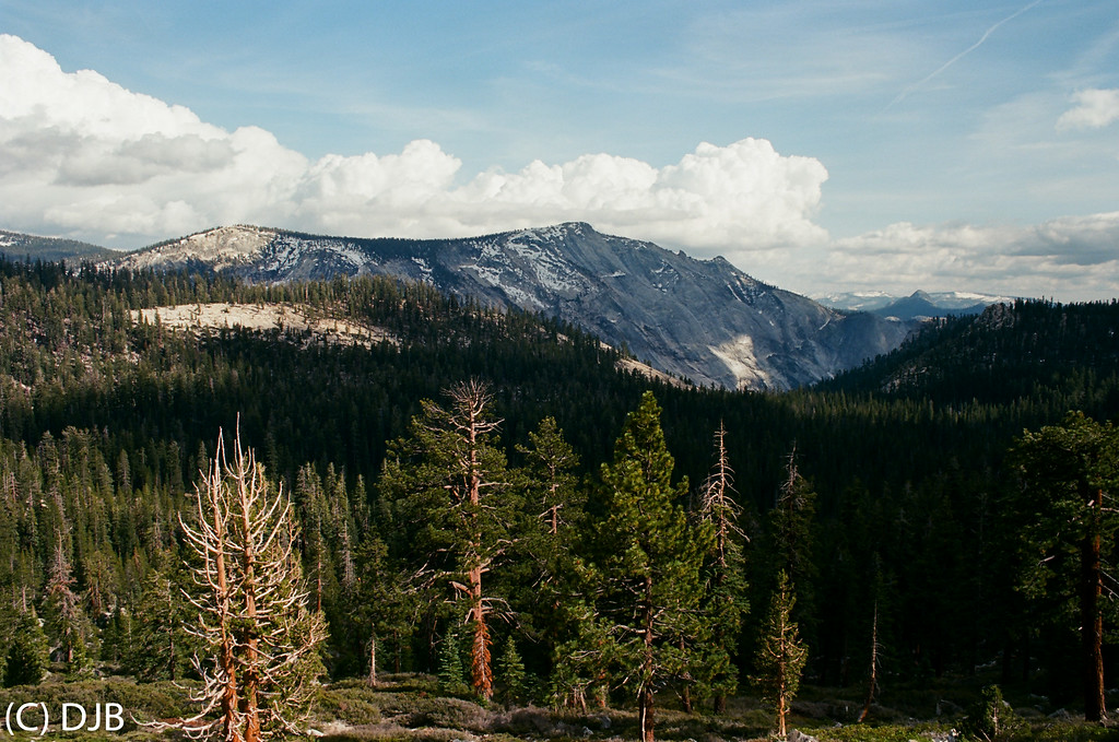 """Yosemite National Park.  Image Copyright 2014 by DJB.  All Rights Reserved.   <a href=""""http://www.DaveXMasterworks.com"""">http://www.DaveXMasterworks.com</a>,  <a href=""""http://www.facebook.com/DaveXMasterworksPhoto"""">http://www.facebook.com/DaveXMasterworksPhoto</a><br /> Film Processing and Scanning by North Coast Photo Services."""