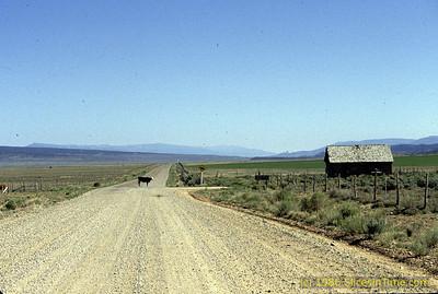 Exploring the back country in Utah