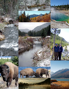 Yellowstone Collage 2012  ****