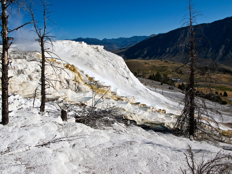 Mammoth Hot Springs Terraces 4, Yellowstone NP