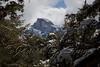 Yosemite Falls Trail-1