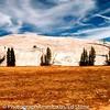 08 - Yosemite NP 02 - Toulumne Meadow 04
