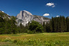 Valley View of Half Dome copy