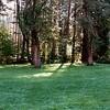 14 - Yosemite NP - Valley 01