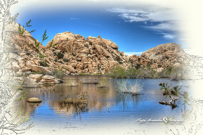 Lake at Joshua Tree National Park, California, March 31, 2010
