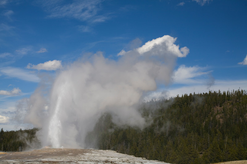 Old Faithful Geyser<br /> Yellowstone National Park, WY<br /> <br /> © WEOttinger, The Wildflower Hunter - All rights reserved<br /> For educational use only - this image, or derivative works, can not be used, published, distributed or sold without written permission of the owner.