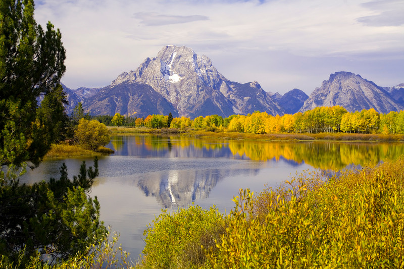 Grand Tetons National Park, Wyoming<br /> <br /> © WEOttinger, The Wildflower Hunter - All rights reserved<br /> For educational use only - this image, or derivative works, can not be used, published, distributed or sold without written permission of the owner.