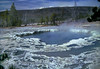 Yellowstone National Park, October 1, 1996