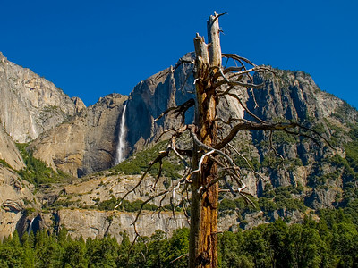 Yosemite_Waterfalls-6