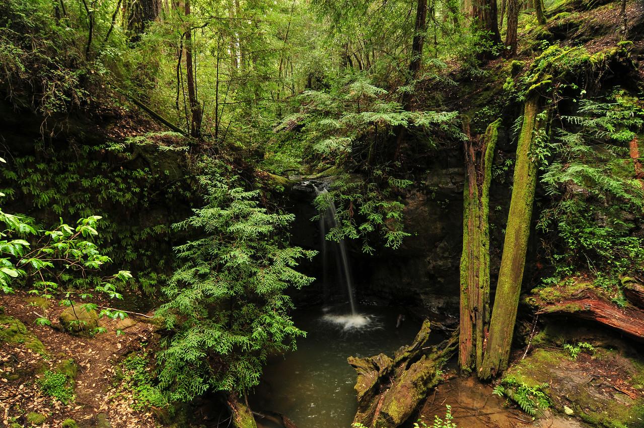 Sempervirens Falls by Big Basin Redwoods State Park