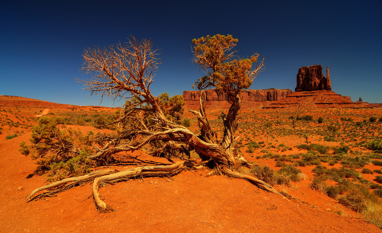 View of Monument Valley.